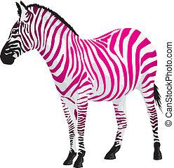 Cebra con rayas de color rosa.