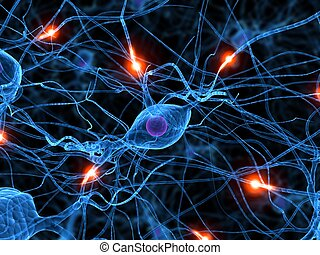Celda activa del nervio