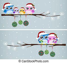 Celebración navideña de la familia Owl