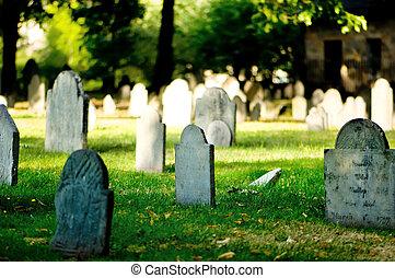 Cementerio con muchas lápidas en el día brillante