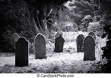 cementerio, nieve, y