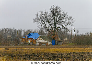 centenary, antiguo, rural, roble, casa