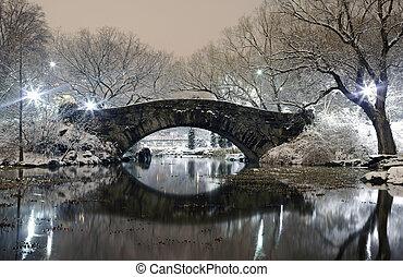 Central Park por la noche en NYC