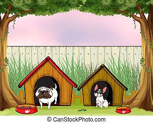 cerca, de madera, dentro, dos, casas, mascotas