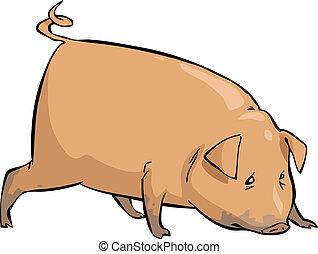 Cerdo de cartón