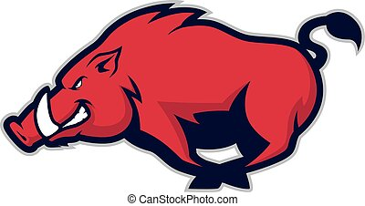 cerdo, o, verraco, mascota, salvaje