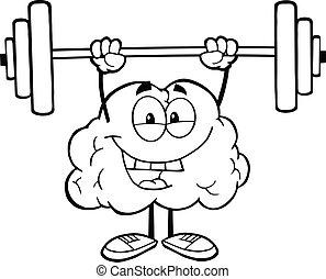 cerebro, contorneado, pesas, elevación