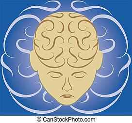 cerebro, laberinto