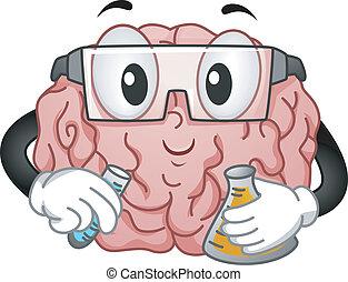 cerebro, química, experimento, mascota