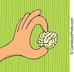 cerebro, tenencia, diminuto, mano