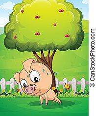 cereza, debajo, árbol, ejercitar, cerdo
