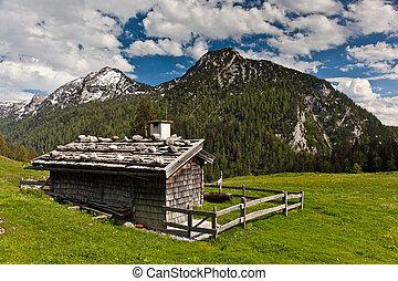 chalet, alp
