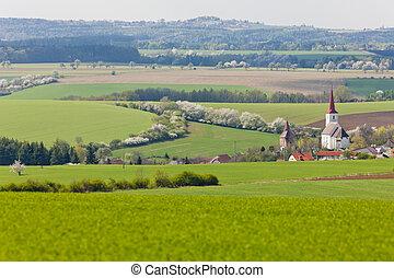 checo, vitice, república