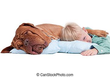 Chico con un perro en el suelo