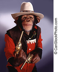 chimpancé, vaquero