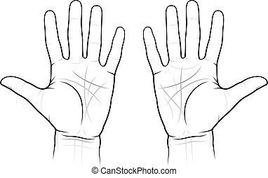 Chiromancia de las palmas