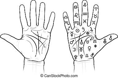 Chiromancia de las palmas (con señales)