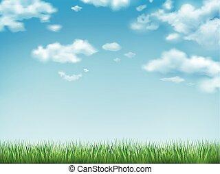 cielo azul, pasto o césped, campo verde