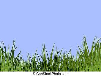 Cielo azul y hierba