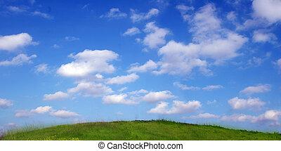 Cielo y hierba