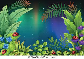 cinco, bichos, selva tropical