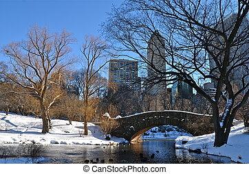 Ciudad de Nueva York en el puente de la grieta
