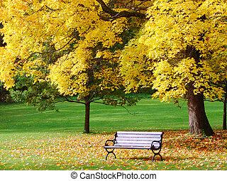 ciudad del parque, otoño