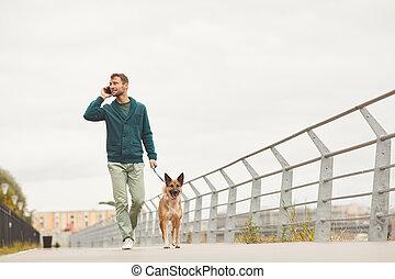 ciudad, hombre caminar, perro