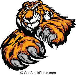cla, cuerpo, tigre, mascota, patas