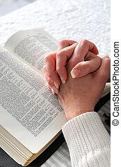 Clasificaron las manos en la oración