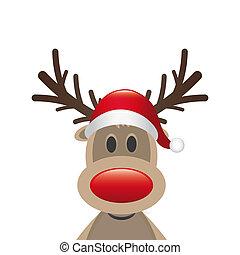 claus, reno, nariz, santa sombrero, rojo