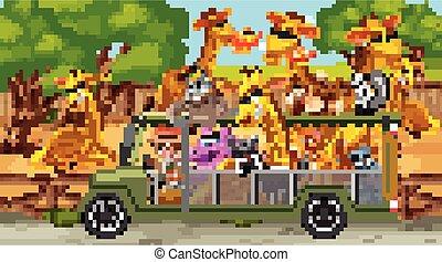 coche, animales, safari, escena, turista, salvaje