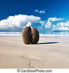 (coco, seychelles, de, mer), cocos, playa, sea's