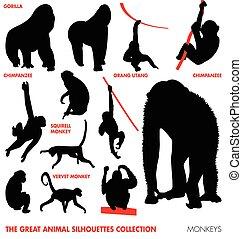 Colección de animales, monos