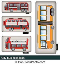 Colección de autobús