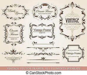 Colección de elementos vectoriales