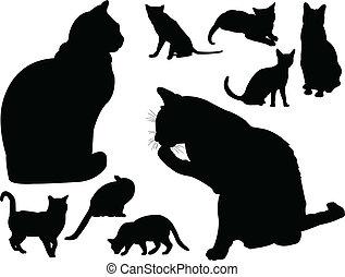 Colección de gatos, vector