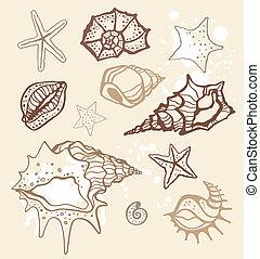 Colección de mar. Ilustración del vector a mano