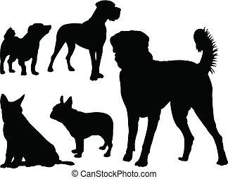 Colección de perros, vector