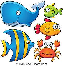 Colección de pescado marino