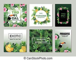 Colección de tarjetas imprimibles tropicales con hojas de palma, tucán.
