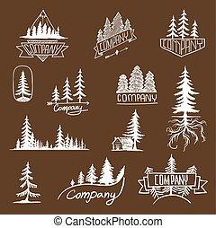 Colección de vectores de árboles de placa del bosque
