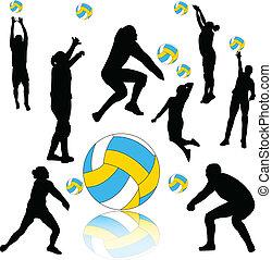 Colección de voleibol, vector