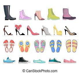 Colección de zapatos. Calzado femenino moderno