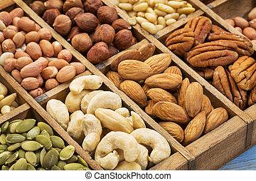 colección, nueces, semilla