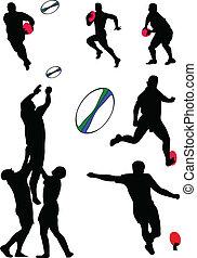 Colección Rugby, vector