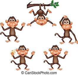 Coleccion de monos de dibujos animados