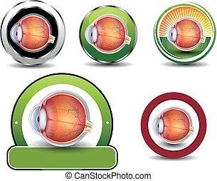 Coleccion de símbolos de oftalmología, sección de ojos humanos.