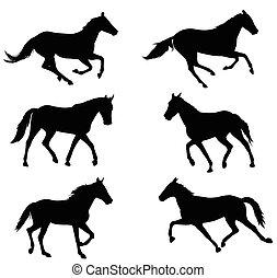 Coleccion de siluetas de caballos