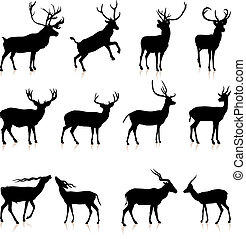 Coleccion de siluetas de ciervo